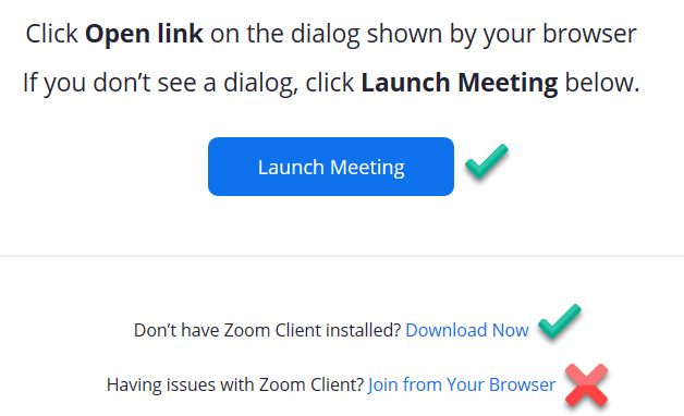 Zoom browser launch